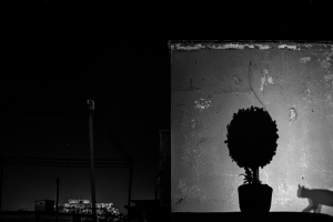 Κώστας Αρβανίτης-Photopia